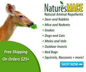 Buy Deer Repellent Spray